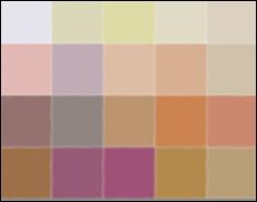 Cafe Proposal color swatch 6x4 pixels